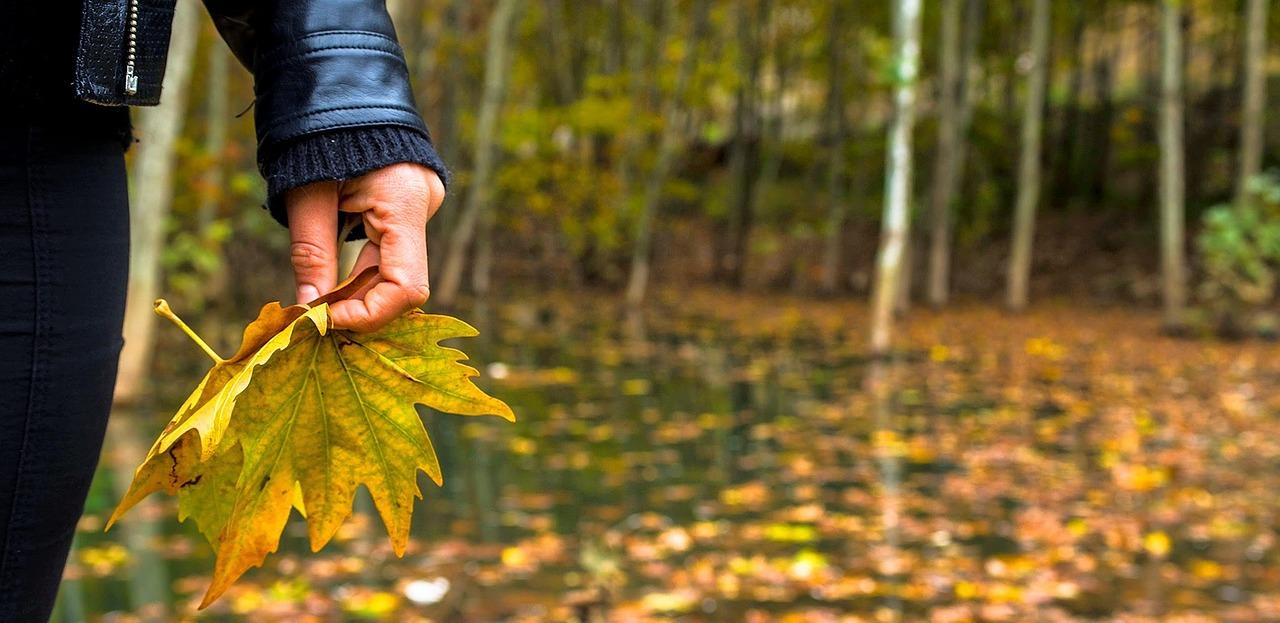 ¿Proteges tus ojos del sol durante los meses de otoño?